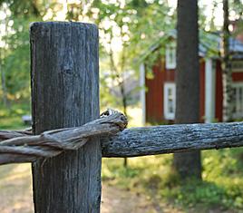 Kesäkuva, jossa näkyy puinen vanha aita ja taustalla punainen pieni mökki.